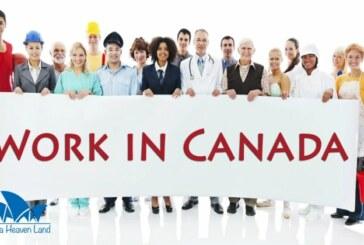 Phong cách làm việc ở Canada